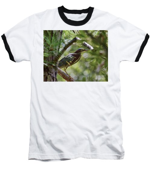 Baseball T-Shirt featuring the photograph Wild Birds - Green Heron Tries To Hide by Kerri Farley