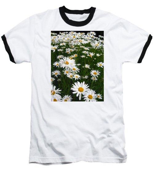 Wild Daisies Baseball T-Shirt by Dorothy Cunningham