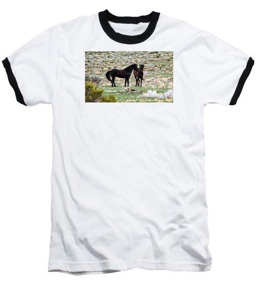 Wild Mustang Stallions Baseball T-Shirt
