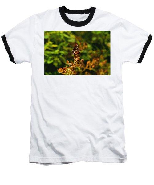 Wingo Butterfly Baseball T-Shirt