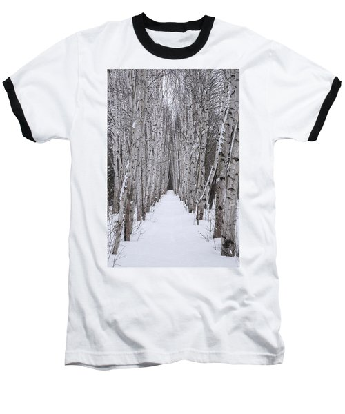 Winter Birch Path Baseball T-Shirt