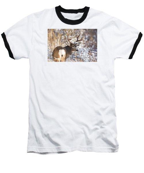 Winter Buck Baseball T-Shirt