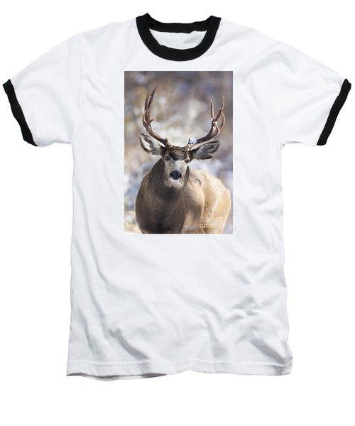 Winter Buck II Baseball T-Shirt