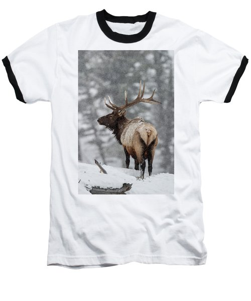 Winter Bull Elk Baseball T-Shirt