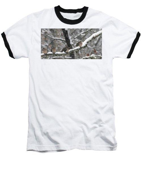 Winter Doves Baseball T-Shirt by Diane Giurco