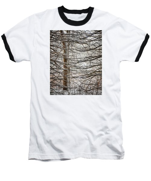 Baseball T-Shirt featuring the photograph Winter In The Woods by Nikki McInnes