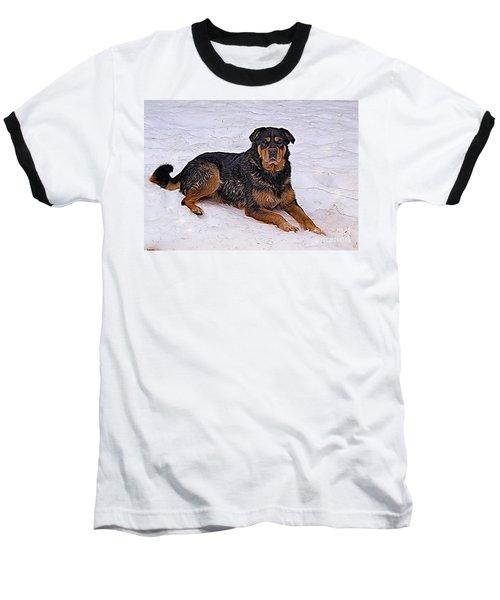 Winter Play Baseball T-Shirt