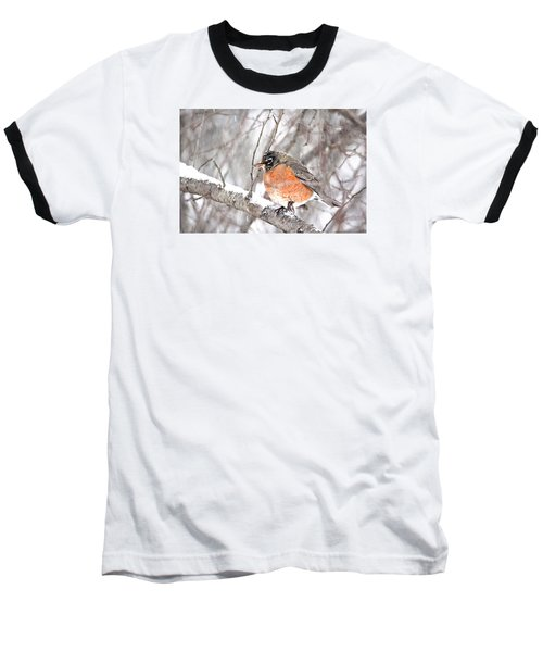 Baseball T-Shirt featuring the photograph Winter Robin by Trina Ansel