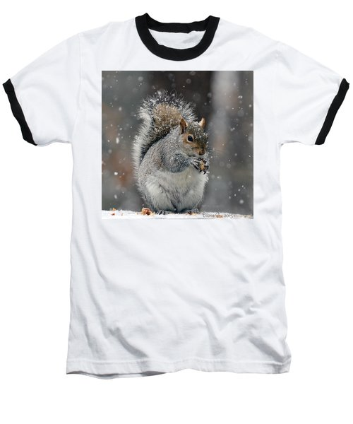 Winter Squirrel Baseball T-Shirt by Diane Giurco