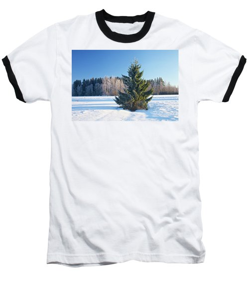 Wintry Fir Tree Baseball T-Shirt by Teemu Tretjakov