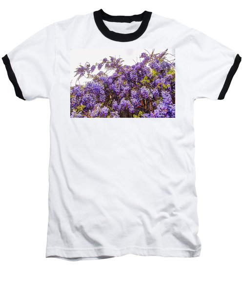 Wisteria Spring Bloom Baseball T-Shirt