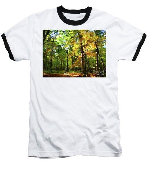 Wood Plank Trail Baseball T-Shirt