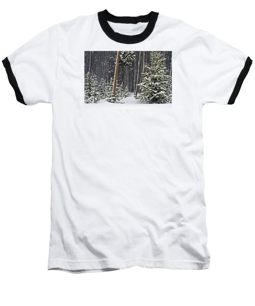 Woodland Snowstorm In Yellowstone Baseball T-Shirt