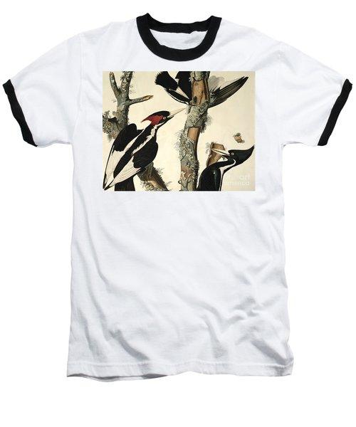 Woodpecker Baseball T-Shirt