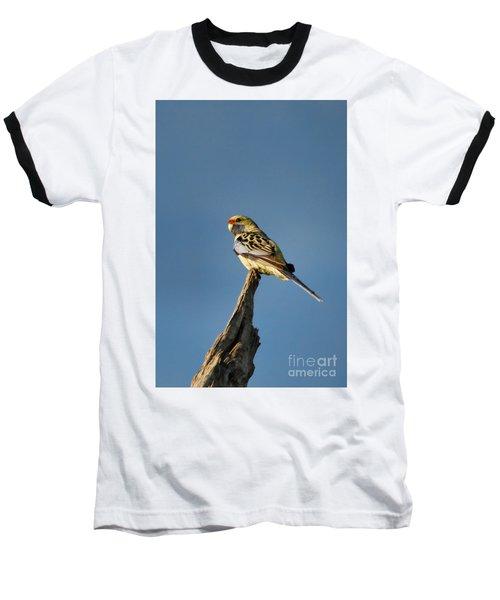Baseball T-Shirt featuring the photograph Yellow Crimson Rosella by Douglas Barnard