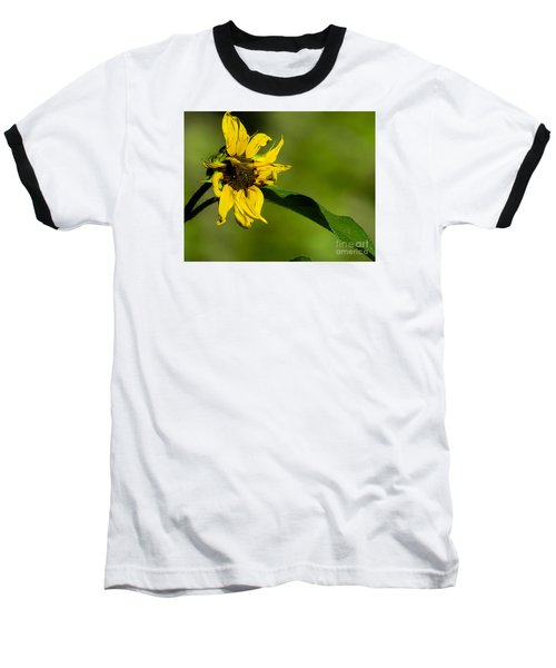 Yellow Flower 1 Baseball T-Shirt