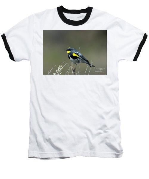 Yellow-rumped Warbler Baseball T-Shirt by Mike Dawson