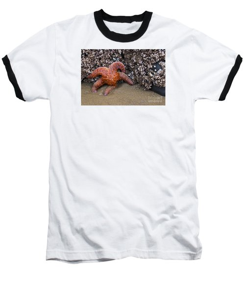 Orange Starfish On Beach #4 Baseball T-Shirt by Chuck Flewelling