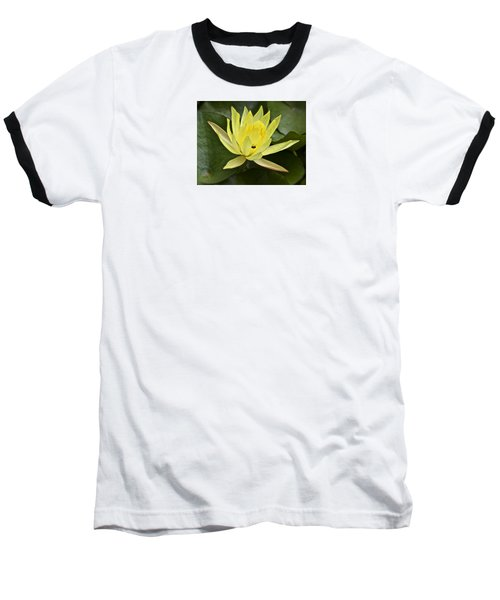 Yellow Waterlily With A Visiting Insect Baseball T-Shirt