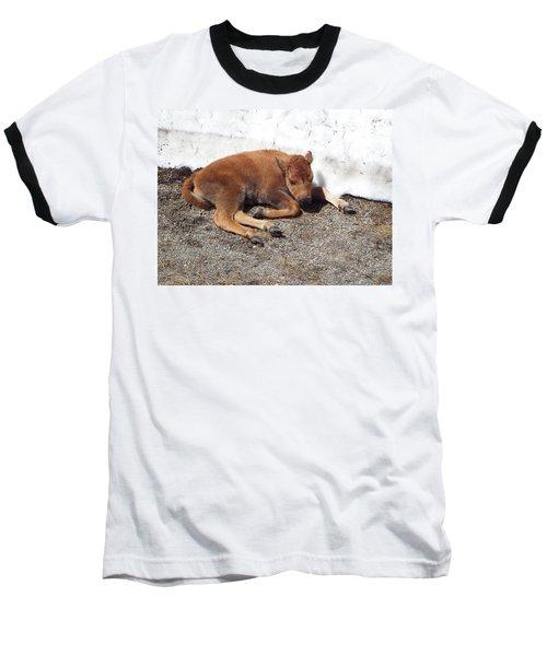 Yellowstone Bison Calf  Baseball T-Shirt