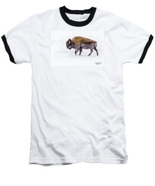 Yellowstone Bison Baseball T-Shirt
