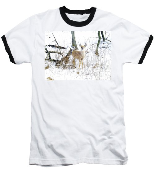 Young Doe And Spring Snow Baseball T-Shirt