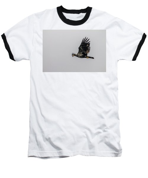 Young Eagle In Flight 07 Baseball T-Shirt by Timothy Latta