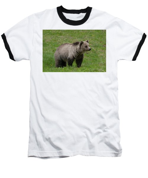 Young Grizzly Baseball T-Shirt