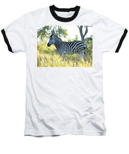 Young Zebra Baseball T-Shirt by Bruce W Krucke