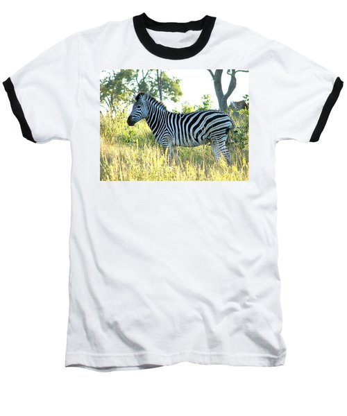 Young Zebra Baseball T-Shirt