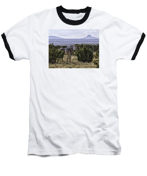 Your'e Safe Here Baseball T-Shirt by Elizabeth Eldridge