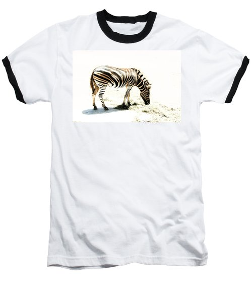 Zebra Stripes Baseball T-Shirt