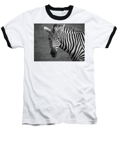 Baseball T-Shirt featuring the photograph Zebra by Trace Kittrell