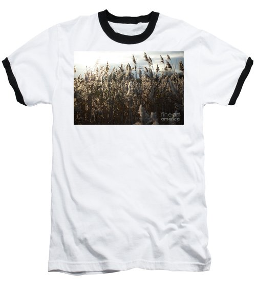 Fine Art Nature Baseball T-Shirt