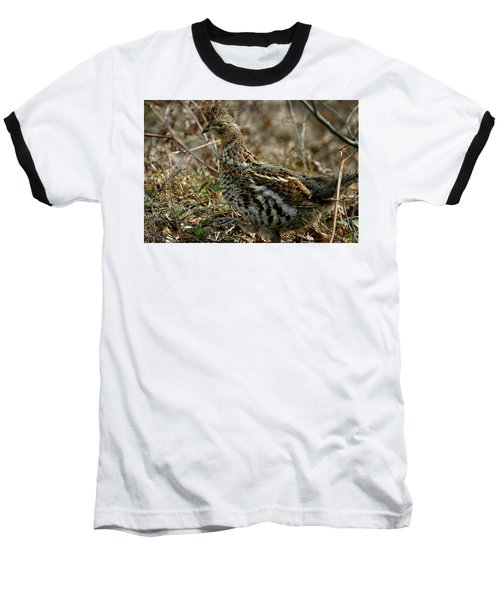 Ruffed Grouse 50702 Baseball T-Shirt