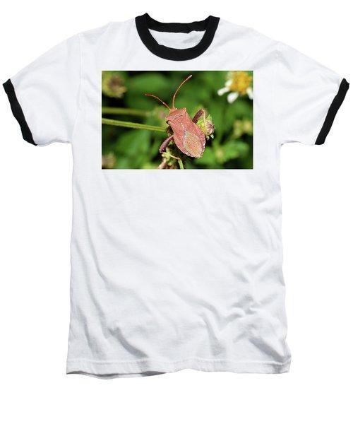 Leaf Footed Bug Baseball T-Shirt