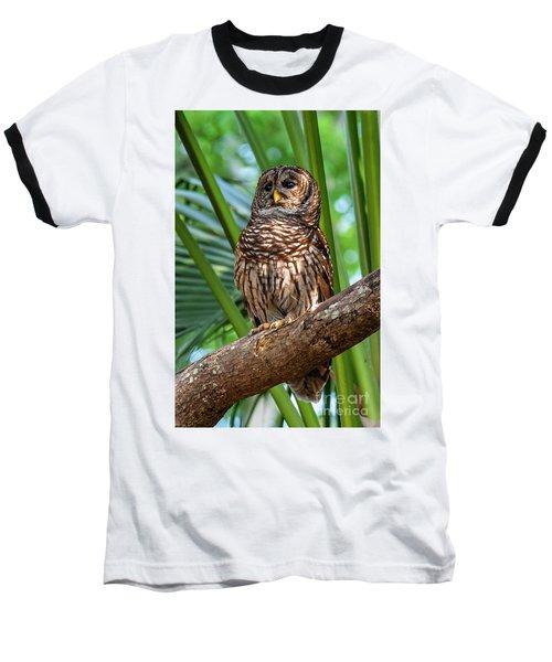 Barred Owl On Perch Baseball T-Shirt