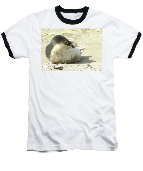 Beach Seal Baseball T-Shirt