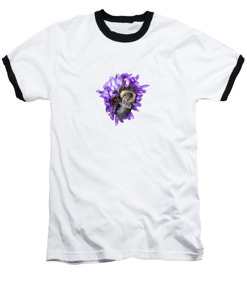 Bee 2018-1 Isolated Baseball T-Shirt