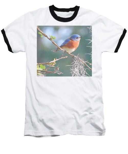 Bluebird In Dixie  Baseball T-Shirt
