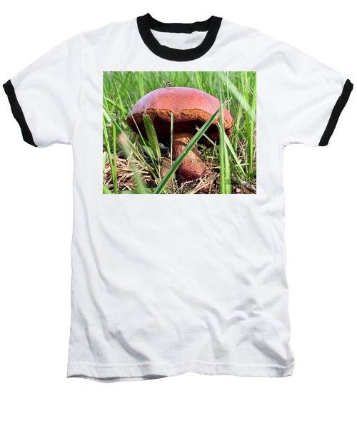 Bug On Boletus Edulis Baseball T-Shirt