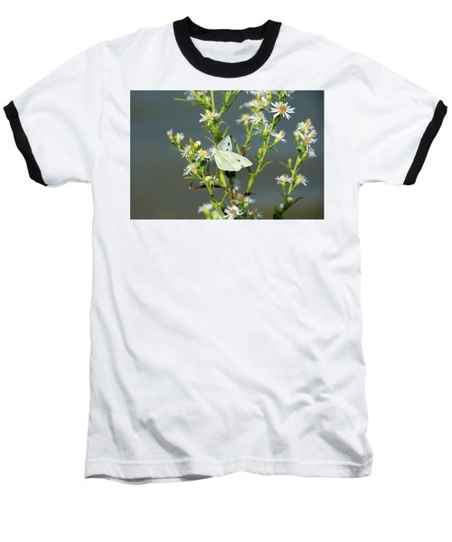 Cabbage White Butterfly On Flowers Baseball T-Shirt