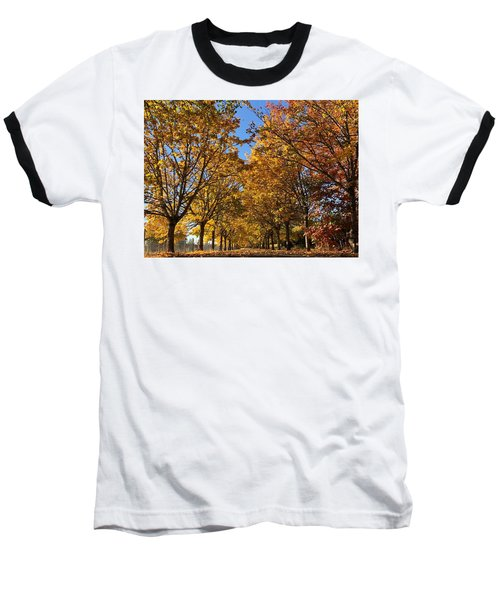 Canopy Of Color Baseball T-Shirt
