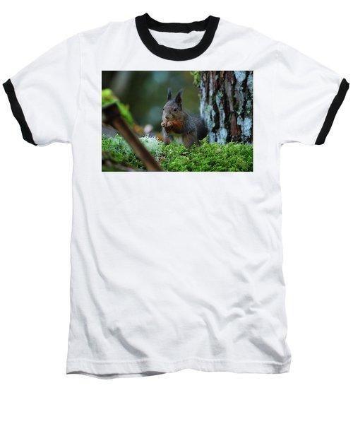 Eating Squirrel Baseball T-Shirt