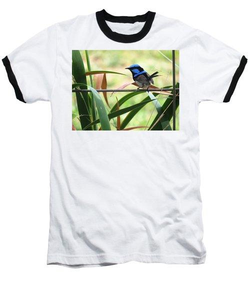 Fairy-wren 1 Baseball T-Shirt