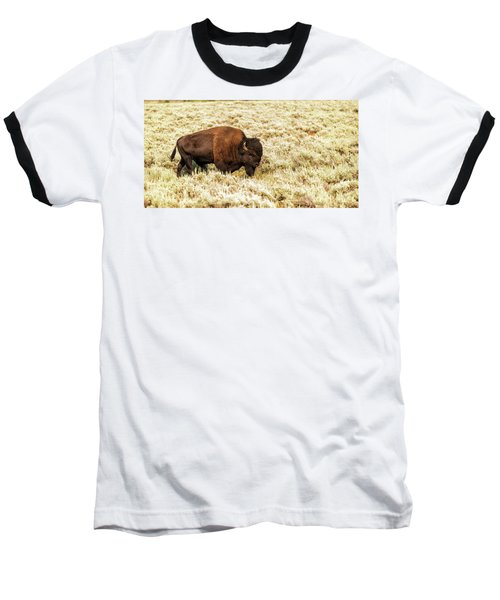 Roam Free Baseball T-Shirt