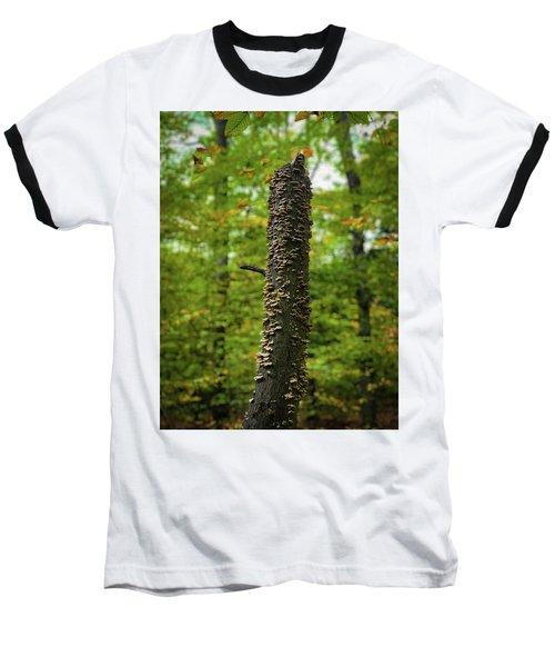 Fungus Among Us Baseball T-Shirt