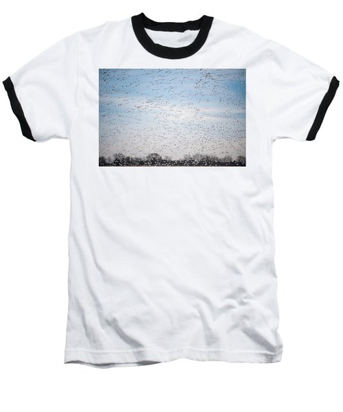 Geese In The Flyway Baseball T-Shirt