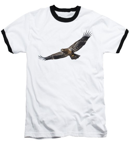 Isolated Bald Eagle 2018-3 Baseball T-Shirt