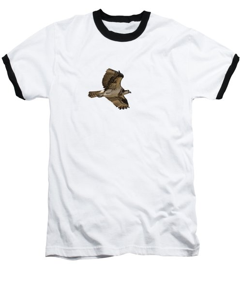 Isolated Osprey 2019-1 Baseball T-Shirt
